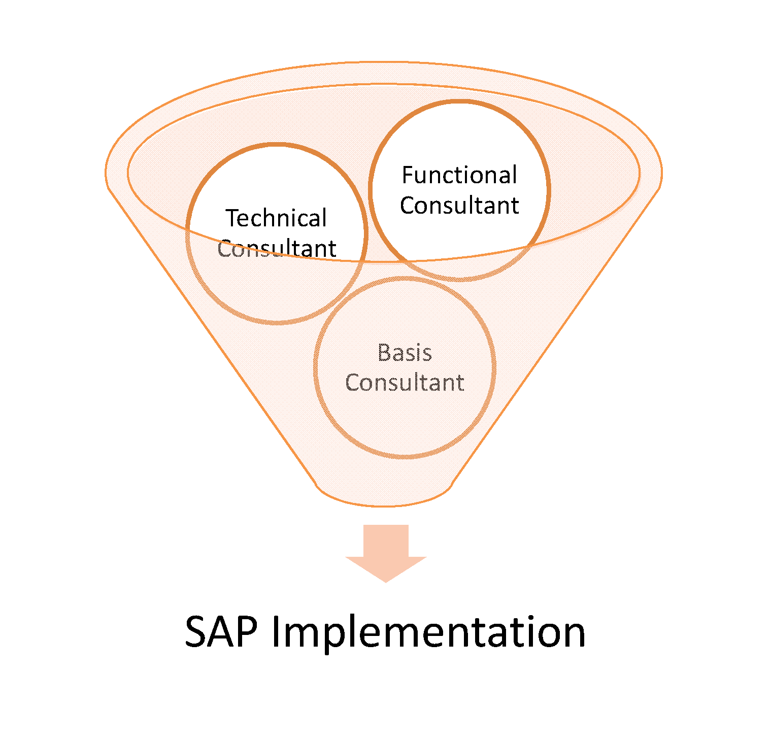Would be sap consultants please read 1 functional consultant xflitez Images